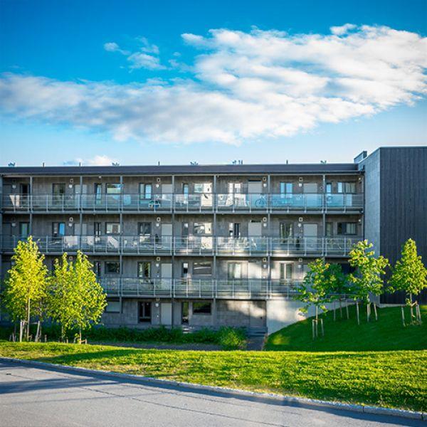 """Utleir Hus 7"" Residential Estate in Trondheim, Norway"